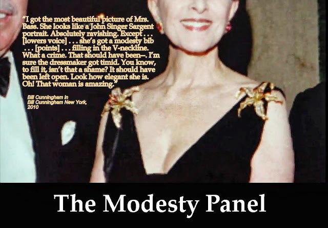 Modesty_Panel